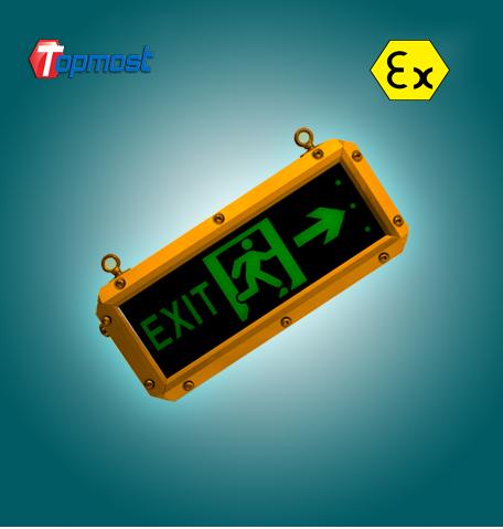 LED Explosion-proof Emergency Indicating Light1