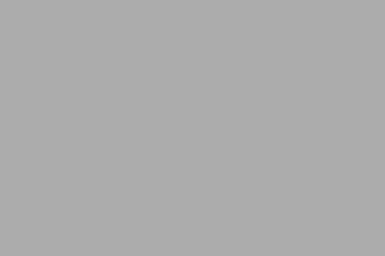photodune-1860048-professional-team-xs